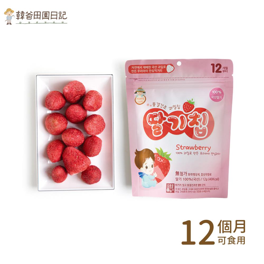 韓爸田園日記-寶寶乾水果片(草莓)